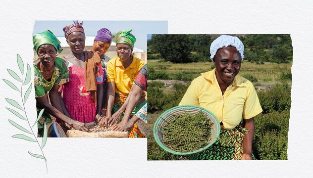 Our sustainable beauty journey