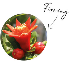 Pomegranate Flower Extract