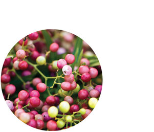 Pink Pepper Berry Essential Oil